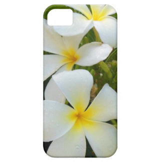 Hawaii Plumeria iPhone 5 Covers