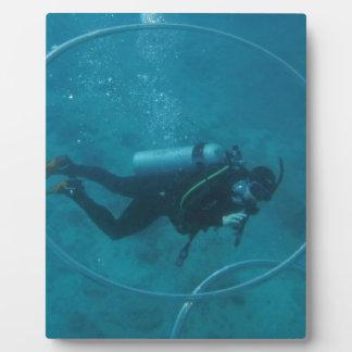 Hawaii scuba diver plaque