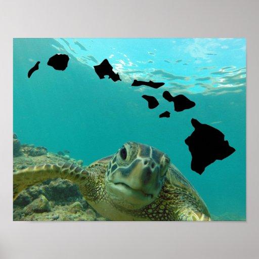 Hawaii Sea Turtle Poster