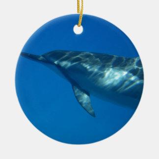Hawaii Spinner Dolphin Ceramic Ornament