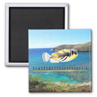 Hawaii State Fish - Humuhumunukunukuapua'a. Square Magnet