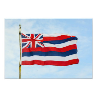 Hawaii State Flag Photo Print