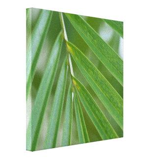 Hawaii Tropical Palm Tree Canvas Print