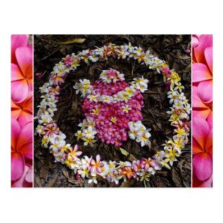 Hawaii Turtle Honu Plumeria Summer Flower Paradise Postcard