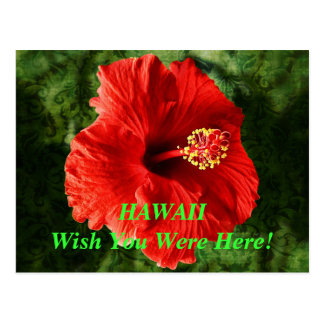 Hawaii Wish You Were Here Postcard