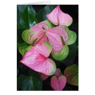 Hawaiian Anthurium Card