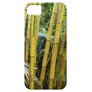 Hawaiian Bamboo iPhone 5 Case