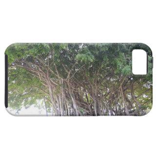 Hawaiian Banyan Tree iPhone 5 Case