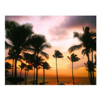 Hawaiian Beach Palm Trees Sunset - Hawaii Travel Postcard