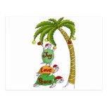 Hawaiian Christmas Turtle Santas Post Card