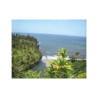Hawaiian Coast Canvas Print