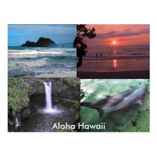 Hawaiian Collection Postcard