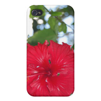 Hawaiian Flower Case iPhone 4 Covers