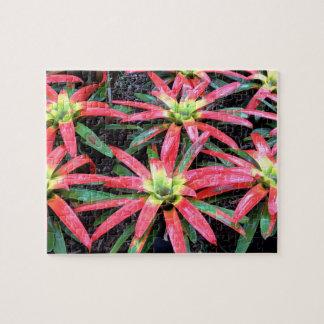 Hawaiian Flower Puzzle