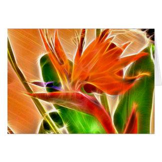 Hawaiian Flowers 9 Card