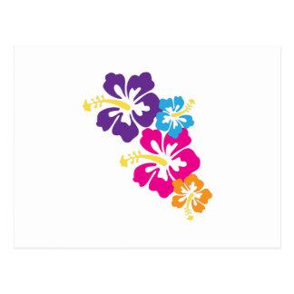 Hawaiian Flowers Postcards