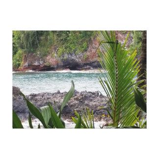 Hawaiian Flowing Stream Canvas Print