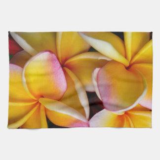 Hawaiian Frangipani Hand Towels