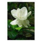 Hawaiian Gardenia Card