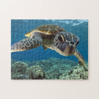 Hawaiian Green Sea Turtle Jigsaw Puzzle