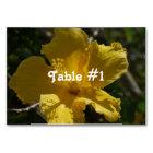 Hawaiian Hibiscus Card