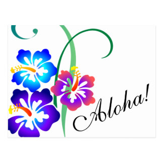 Hawaiian Hibiscus Flowers Aloha Postcard
