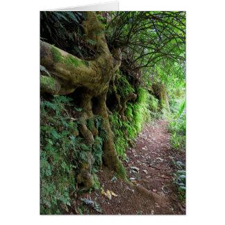 Hawaiian Hiking Trail Card