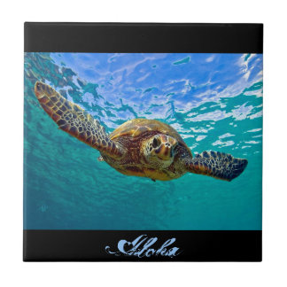 Hawaiian Honu - Sea Turtle Tile