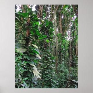 Hawaiian Jungle Poster