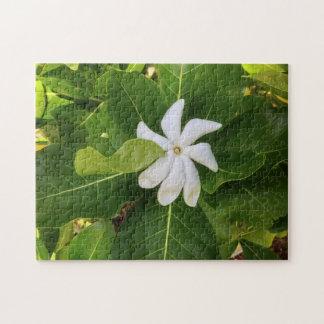 Hawaiian Pikake Jasmine Blossom Jigsaw Puzzle