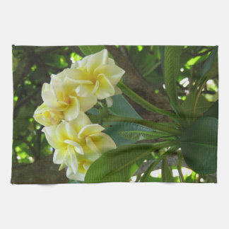 Hawaiian Plumeria Kitchen Towel