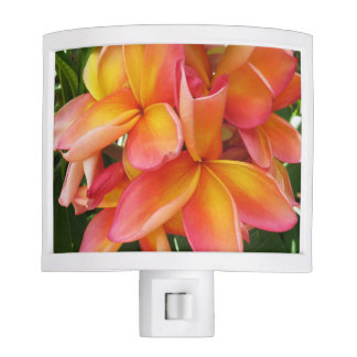 Hawaiian Plumeria Night Light