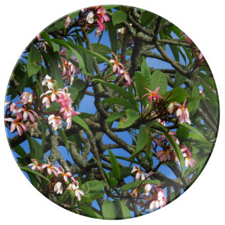 Hawaiian Plumeria Porcelain Plates