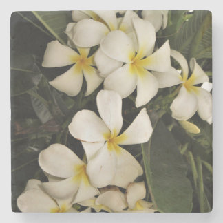 Hawaiian Plumeria Stone Coaster
