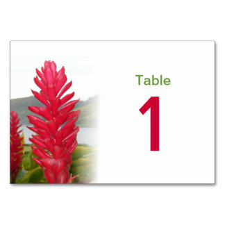 Hawaiian Red Ginger Table Number Card