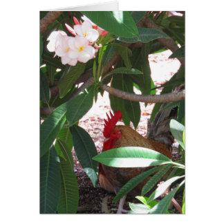 Hawaiian Rooster and Plumeria Card