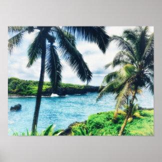 Hawaiian Scene Poster