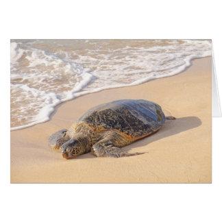 Hawaiian Sea Turtle Card