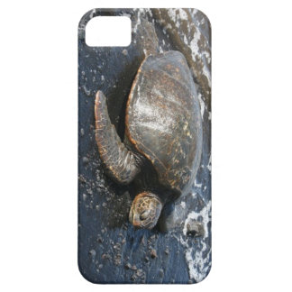 Hawaiian Sea Turtle on Black Sand Beach iPhone 5 Cover