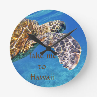 Hawaiian Sea turtle swimming Round Clock