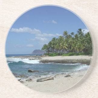 Hawaiian Shore Coaster