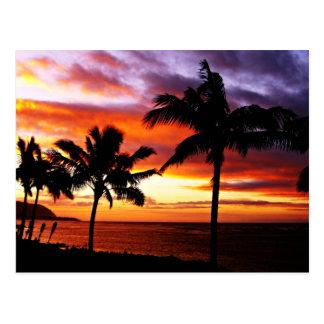 Hawaiian Sunset Postcard