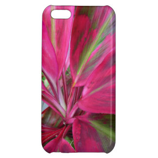 Hawaiian Ti Plant iPhone 5C Cover