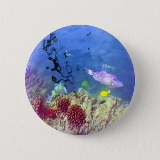 Hawaiian Tropical Fish Button