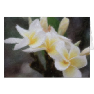 Hawaiian Tropical Plumeria Cards