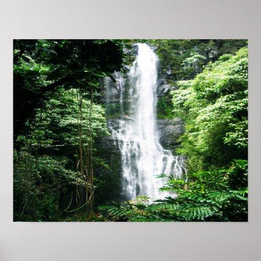 Hawaiian Waterfall Posters