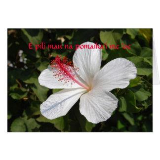 Hawaiian Wedding Best Wishes White Hibiscus Card
