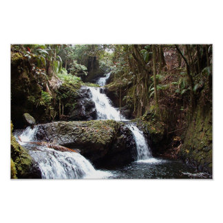 Hawaiin Waterfalls Poster