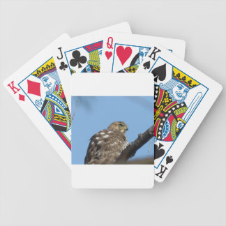hawk bicycle playing cards