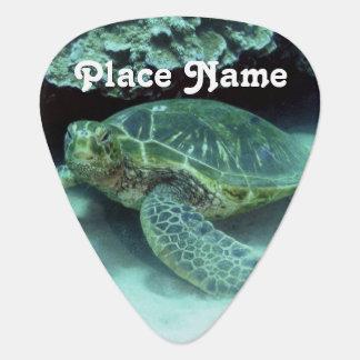 Hawk Billed Turtle Pick